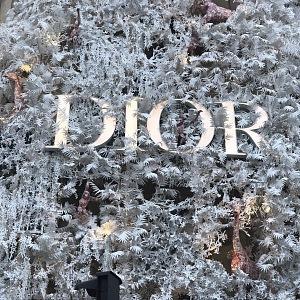 Luxusní butik Dior v Paříži