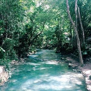 Příroda Kawasan Falls