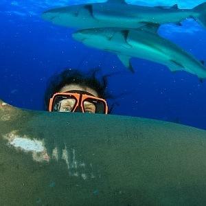 Velkou vášní jí je potápění se žraloky.