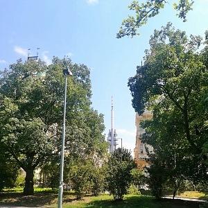 Pohled na Žižkovskou věž