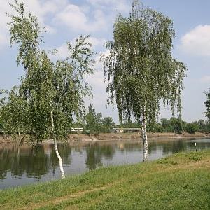 Luxusní bydlení u řeky