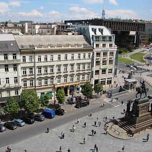 Václavské náměstí a kůň