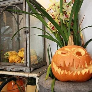 Halloweenská dekorace z Metamorphosis