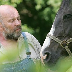 Ludvík je také chovatelem koní.
