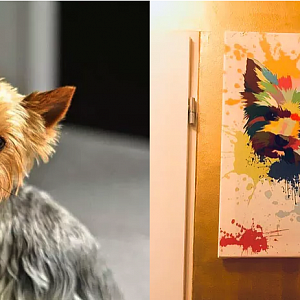 Designs inspired by your dog
