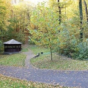 Krajina v parku Cibulka