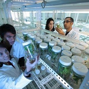 Genová banka se chlubí 45 tisíci druhy semen.