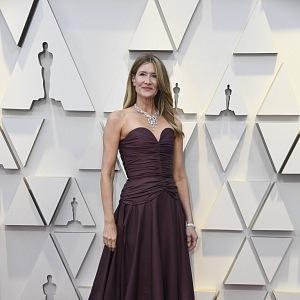 Laura Dern - šaty Rodarte, šperky Harry Winston
