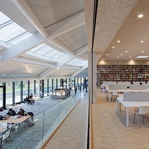 Moderně zařízená knihovna a studovna
