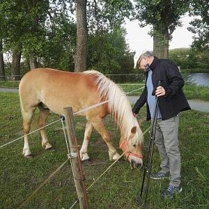 Lubomír Zaorálek s koněm