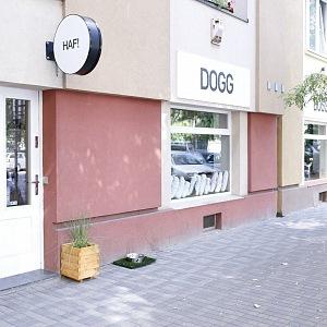 Prodejna DOGG v Holešovicích