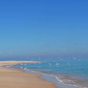 Pláž u města Súr