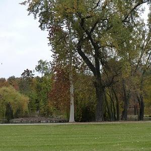 Odpočinek načerpáte v parku Stromovka