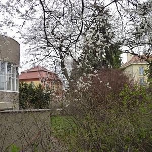 Zadní část domu se zahradou