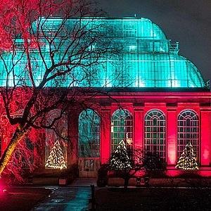Vánoce v Královské botanické zahradě v Edinburghu