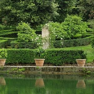Zeleň v zahradě