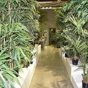 Hedvábné rostliny od značky Jasaco.