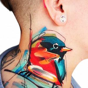 Pták.